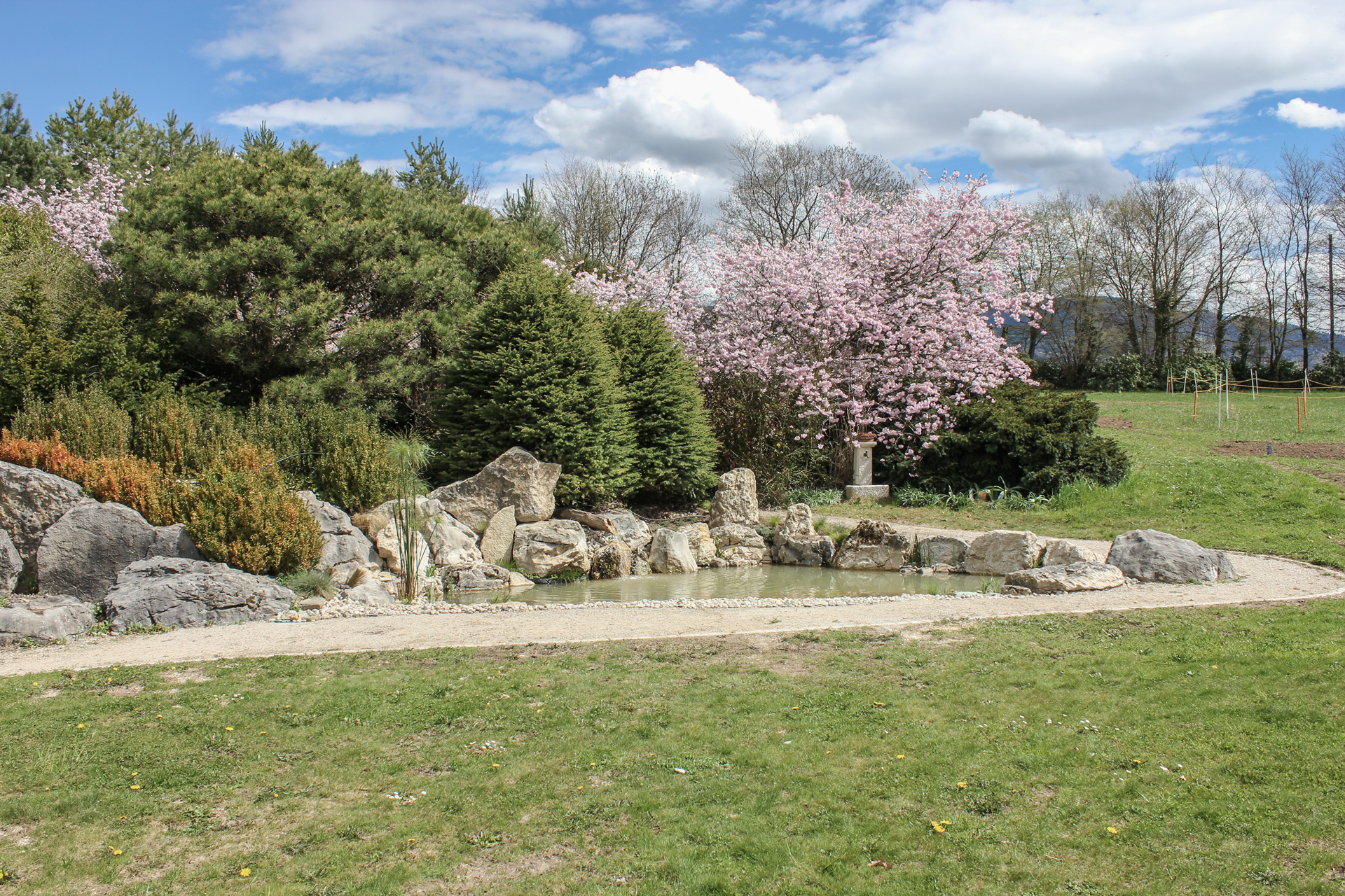 Presinge pond : landscaping