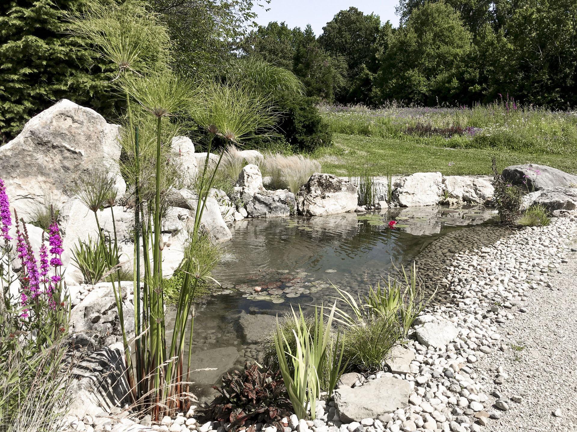 CSDK Bassin de jardin 3 1920x1440 - Engagement durable - CSDK Bassin de jardin 3 1920x1440